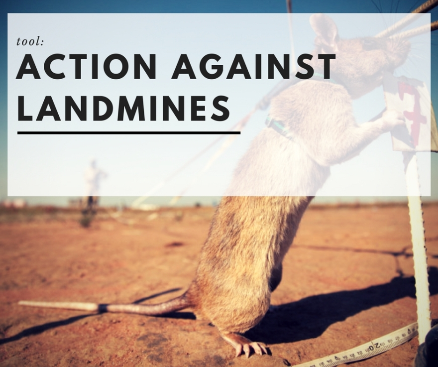 Taking Action Against landmines