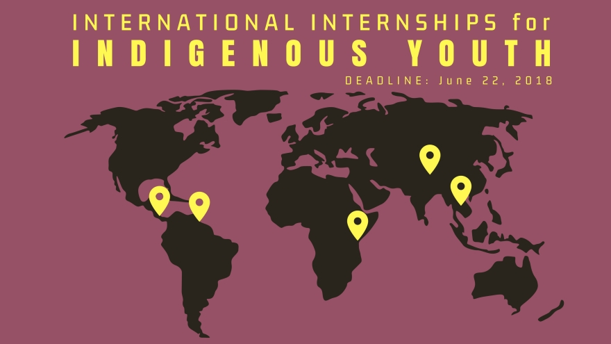 Intl' Internships for Indigenous Youth